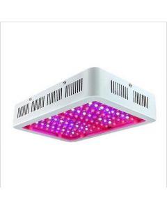 LED växer ljus fullt spektrum 300W 600W 1000W för inomhus tält växthus Hydroponics Växter tillväxtlampa